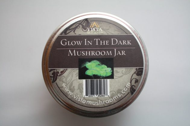 glow_in_the_dark_mushroom_jar_top-a